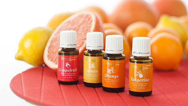 Young-Living-Essential-Oils-Grapefruit-Lemon-Orange-Tangerine